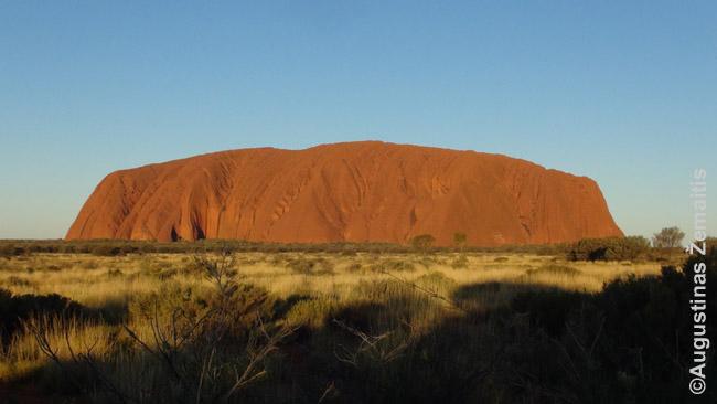 Australijos pietu pakrantes didmiestis